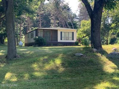 Homes for Sale in Stanwood, MI