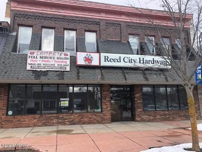 Reed City Commercial For Sale: 114 W Upton Avenue