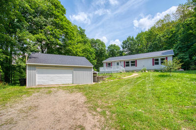 Sand Lake Single Family Home For Sale: 6717 136th Street