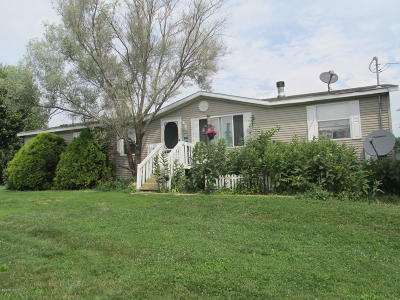 Branch County Single Family Home For Sale: 224 W Girard Road