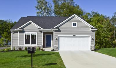 Byron Center Single Family Home For Sale: 7947 Verona Drive SW