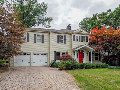 Battle Creek Single Family Home For Sale: 119 Sunnyside Drive