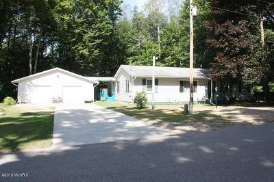 Canadian Lakes MI Single Family Home For Sale: $159,900