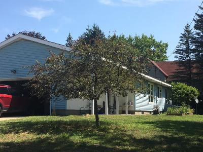 Reed City MI Single Family Home For Sale: $124,900