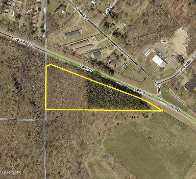 Paw Paw Residential Lots & Land For Sale: M 40 Highway