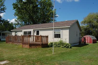 Mecosta County Single Family Home Active Backup: 19296 W Chippewa Drive