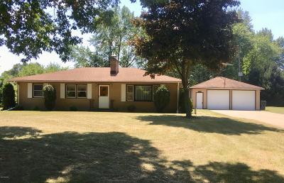 Kalamazoo Single Family Home For Sale: 5596 F Avenue E