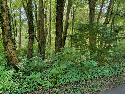 Sawyer Residential Lots & Land For Sale: Terry Lane