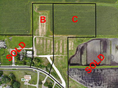 Hudsonville Residential Lots & Land For Sale: 2799 Barry Street