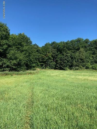 Grand Rapids, East Grand Rapids Residential Lots & Land For Sale: 26th Ave Parcel 3