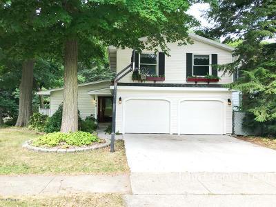 Grand Haven Single Family Home For Sale: 709 Lake Avenue