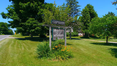 Berrien County, Branch County, Calhoun County, Cass County, Hillsdale County, Jackson County, Kalamazoo County, St. Joseph County, Van Buren County Single Family Home For Sale: 38419 Cr 215