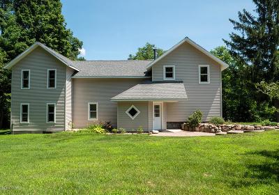 Kalamazoo Single Family Home For Sale: 9687 W M Avenue