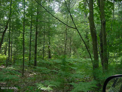 Residential Lots & Land For Sale: Meinert Road #Lot C