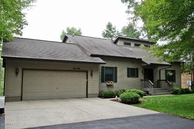Mecosta County Single Family Home For Sale: 9340 Ranger Drive