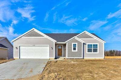 Ottawa County Single Family Home For Sale: 11733 Shagbark Drive