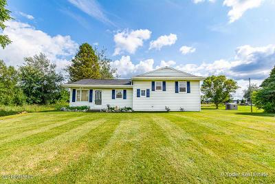 Kalamazoo Single Family Home For Sale: 5066 E O Avenue
