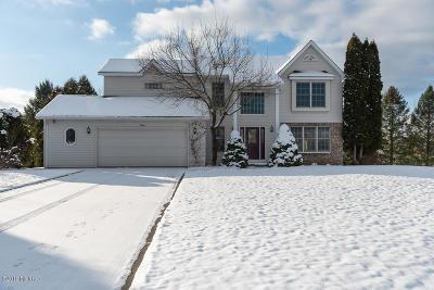 Kalamazoo Single Family Home For Sale: 7264 Orly Court
