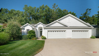 Grand Haven, Spring Lake, Ferrysburg Condo/Townhouse For Sale: 129 Stone Gate Court