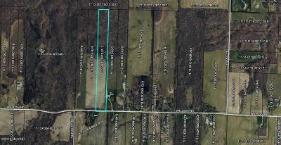 New Buffalo Residential Lots & Land For Sale: 10199 Wilson Road