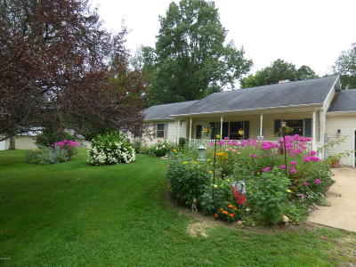 Berrien Springs Single Family Home For Sale: 3420 Us 31