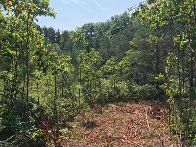 Holland, West Olive Residential Lots & Land For Sale: 152nd Avenue