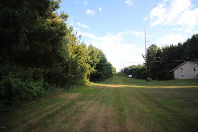 Residential Lots & Land For Sale: 186 9 Mile Road NE