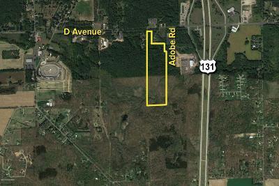 Berrien County, Branch County, Cass County, Calhoun County, Hillsdale County, Jackson County, Kalamazoo County, Van Buren County, St. Joseph County Residential Lots & Land For Sale: D Avenue #6 Acres