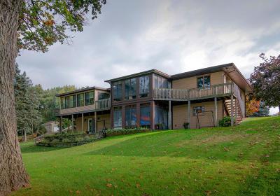 Battle Creek Single Family Home For Sale: 241 Parkshore Drive