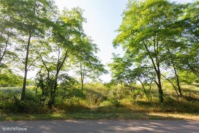New Buffalo Residential Lots & Land For Sale: 51220 E Arnold Drive