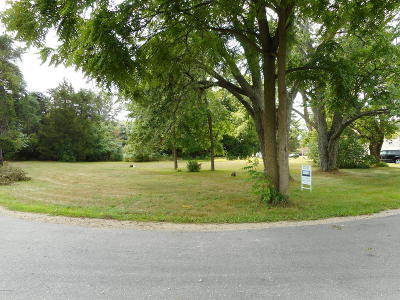 Howard City Residential Lots & Land For Sale: 624 Cherry Street