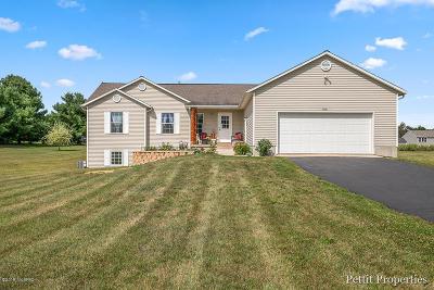 Greenville Single Family Home For Sale: 9091 Wabasis Shores Drive NE