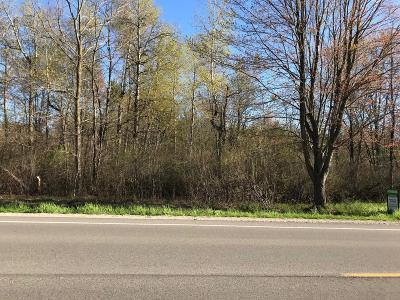 Muskegon Residential Lots & Land For Sale: V/L River Road