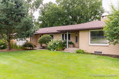 Grand Rapids Single Family Home For Sale: 1139 Rosalie Avenue NW
