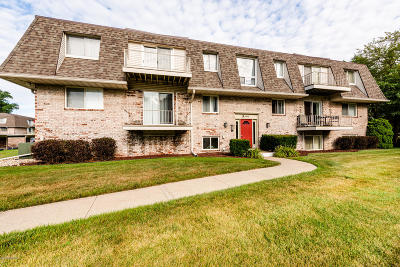 St. Joseph MI Condo/Townhouse For Sale: $100,000