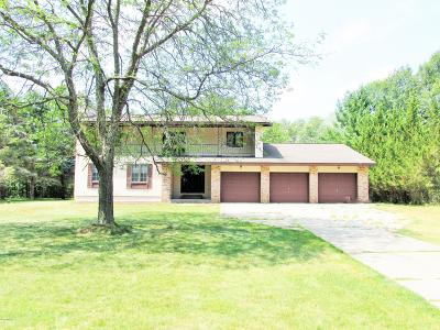 Mecosta County Single Family Home For Sale: 7315 River Ridge Road