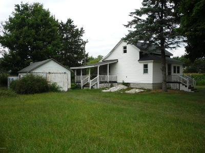 Branch County Single Family Home For Sale: 438 Mill Street