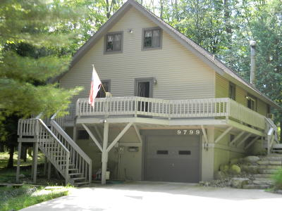 Mecosta County Single Family Home For Sale: 9799 Birdie Drive