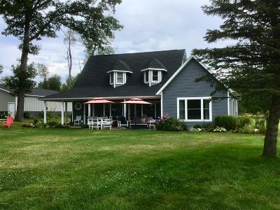 Ceresco MI Single Family Home For Sale: $415,000