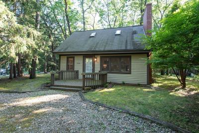 New Buffalo Single Family Home For Sale: 4160 Comanche Trail