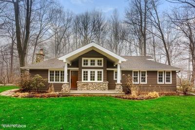 Sawyer Single Family Home For Sale: 6657 W Lake Lane