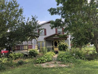 Hillsdale County Single Family Home For Sale: 5051 Burt Road