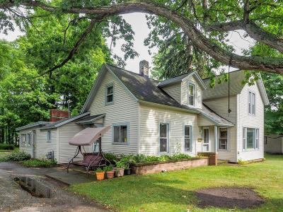 Allegan Single Family Home For Sale: 642 Ely Street