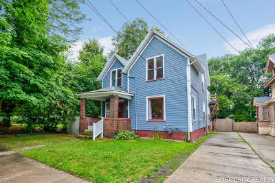 Grand Rapids Single Family Home For Sale: 341 Charles Avenue SE