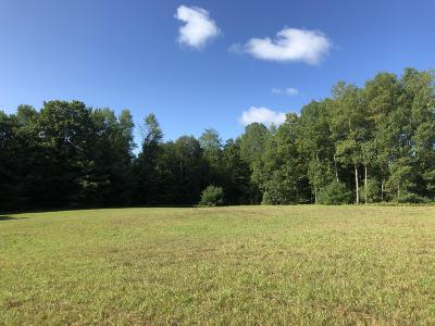 Paris MI Residential Lots & Land For Sale: $180,000