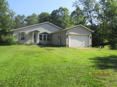 Muskegon Single Family Home For Sale: 3764 W River Road
