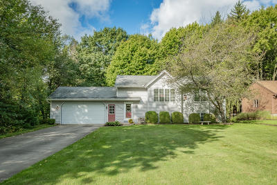 Holland, West Olive Single Family Home For Sale: 15744 Fendt Farm Drive