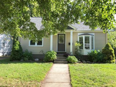 Grand Haven, Spring Lake Single Family Home For Sale: 1316 Colfax Avenue