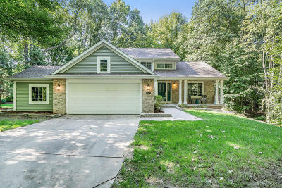 Single Family Home For Sale: 6300 9 Mile Road NE