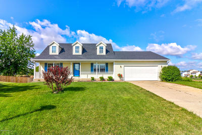 Holland, West Olive Single Family Home For Sale: 3469 Barkton Court